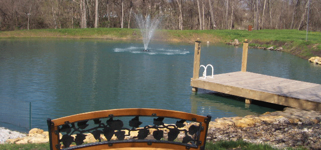 Install a fountain to keep pond clean.